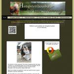 Hengstenhouderij W. van Wanrooij
