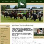 Engels Shetland Pony Stamboek