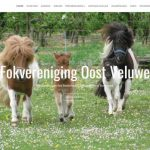 Oost-Veluwe